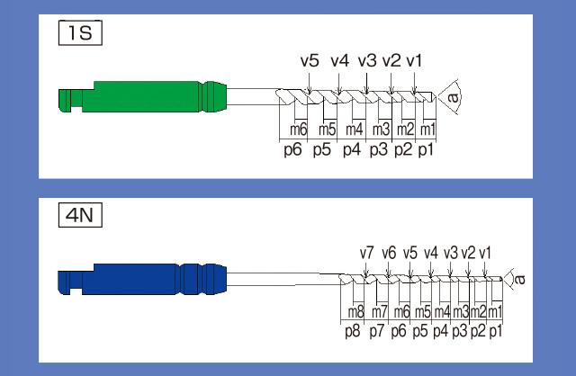 1Sと4Nの形状図