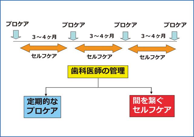 SPT期におけるセルフケアの位置づけの図