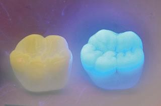 紫外線光源下での比較写真
