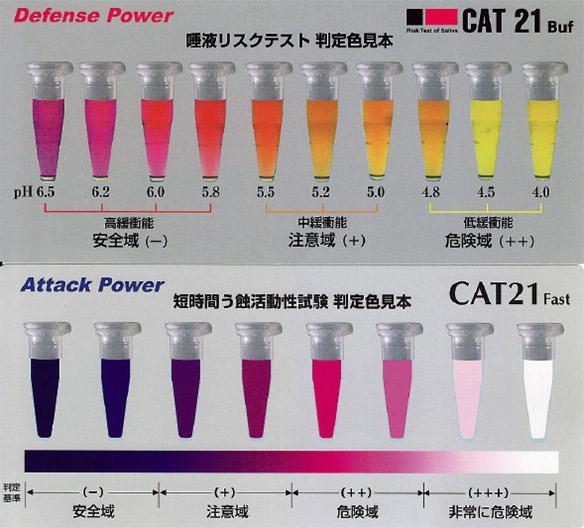 図3 CAT21FastとBufの判定色見本。視覚的でわかりやすい。