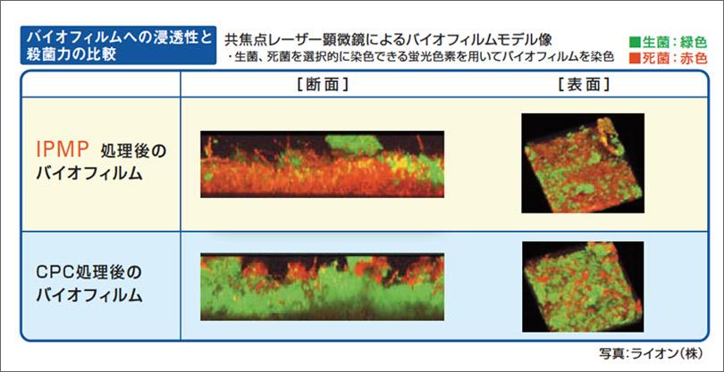 図6 IPMPのバイオフィルムへの浸透効果。殺菌剤IPMPがバイオフィルムの内部まで浸透し殺菌する。