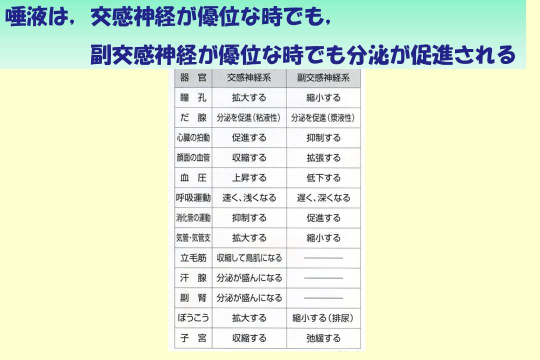 謎解き唾液学 【7】自律神経と唾...